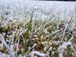 still ist der winter